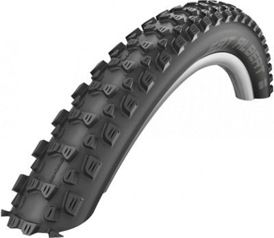 Schwalbe Fat Albert Evo Rear MTB Tyre - S..