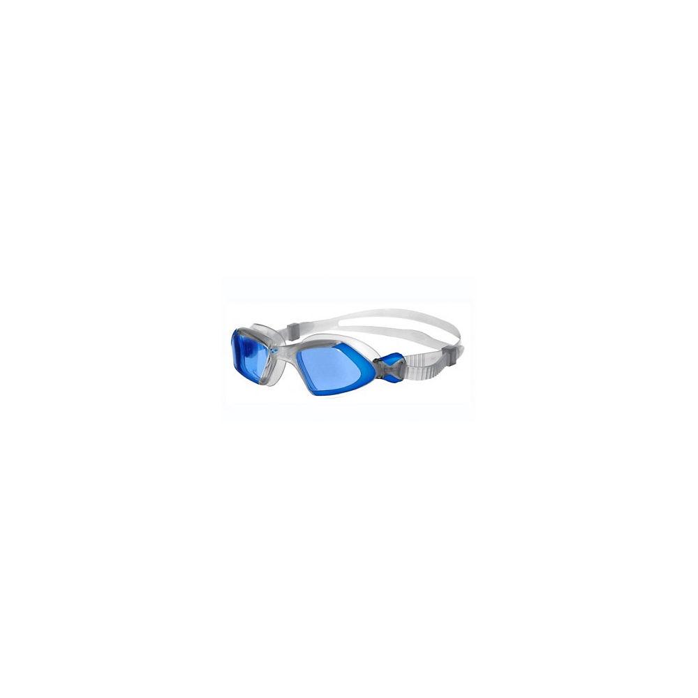 Arena Viper Goggles SS14