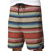 Etnies Surape Board Shorts SS14