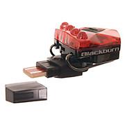 Blackburn Flea 2 USB Twin Pack
