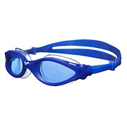 Arena Imax Pro Goggles 2013