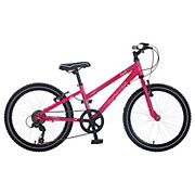 Dawes Paris Girls Bike - 20