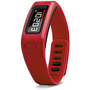 Garmin Vivofit Fitness Band