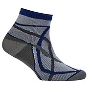 SealSkinz Thin Socklet 2014