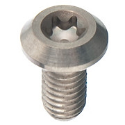 Hayes Disc Screw Titanium HFX - G1 - G2 Calipe