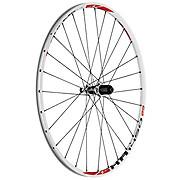 DT Swiss XR 1450 Spline 29er Rear Wheel