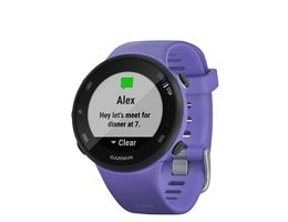 Garmin Forerunner 45-45S GPS Running Watch
