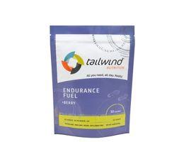 Tailwind Energy Drink 1350g