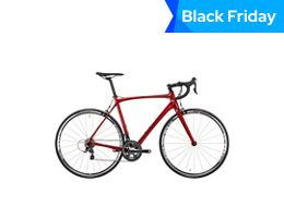 Orro Gold Road Bike Tiagra 2021