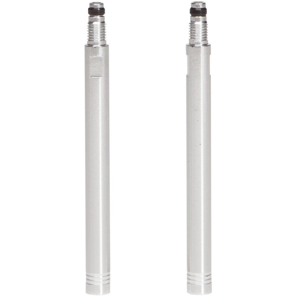 Extensiones de válvula LifeLine - núcleo de válvula desmontable - Par - Plata, Plata