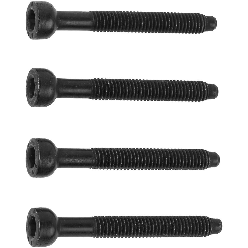 Thule Ridealong Fitting Screws - Neutral - 44mm  Neutral