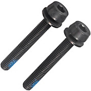Campagnolo 25-29mm Rear Mount Screws