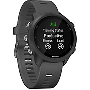 Garmin Forerunner 245 GPS Running Watch